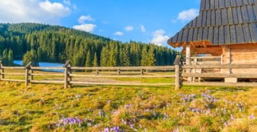 Holiday accommodation - Farm Diversification - Farm Lodges